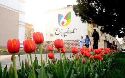 Зацвели тюльпаны –  наступил Наурыз!